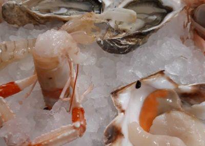 piatto pesce ristorante burchiello mira7